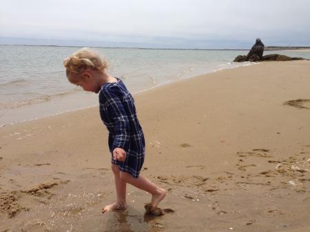 tidal pool maelle